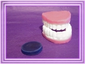 Wax False Teeth